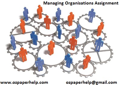 HI6005 Managing Organisations assignment Help