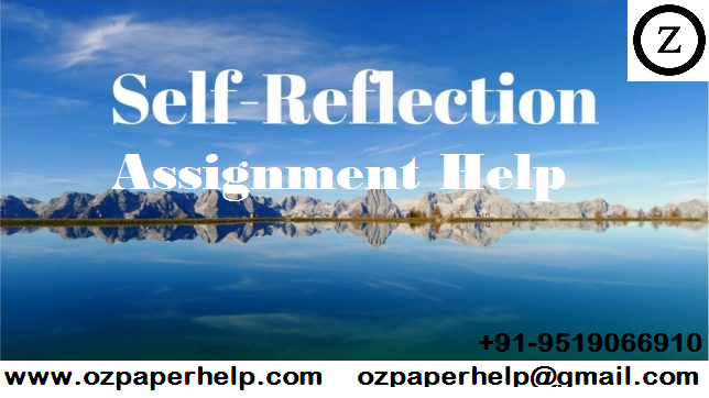 Self-reflection Assignment Help