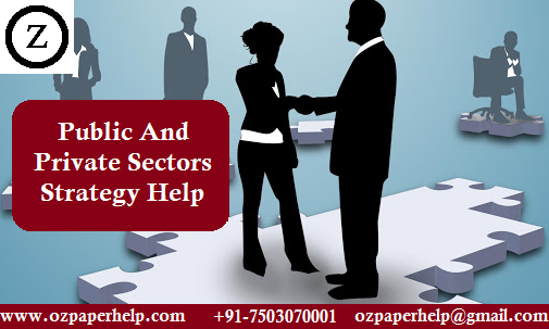 Public And Private Sectors Strategy Help