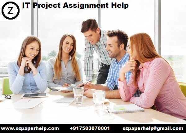 IT Project Assignment Help