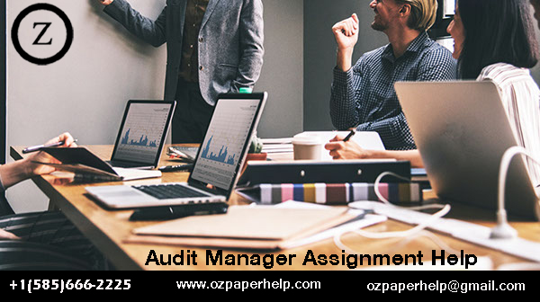 Audit Manager Assignment Help