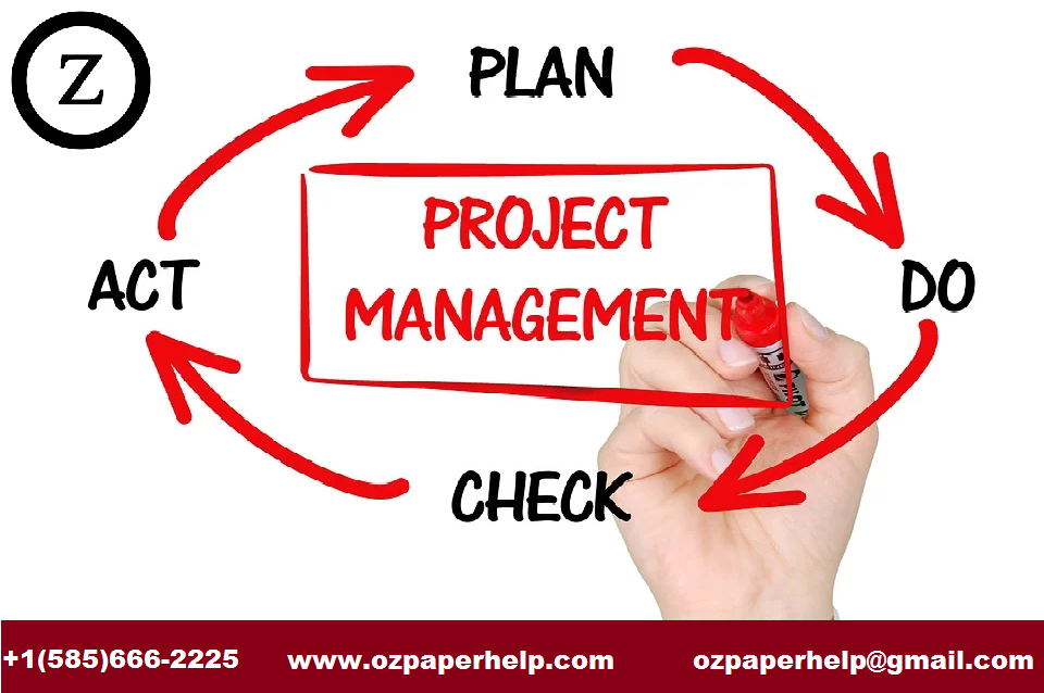Project Management Issues Assignment Help