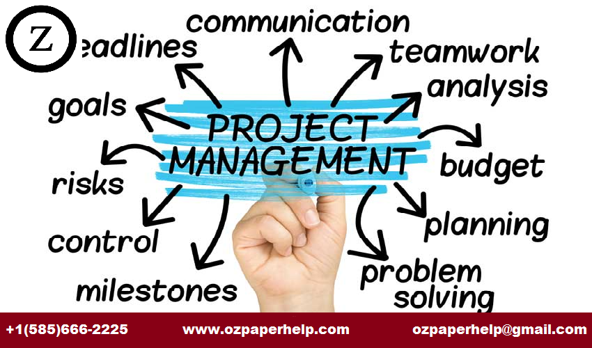 Project Management In Compony